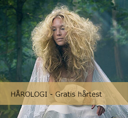 Haartest salon refulin